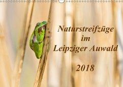 Naturstreifzüge im Leipziger Auwald (Wandkalender 2018 DIN A3 quer)