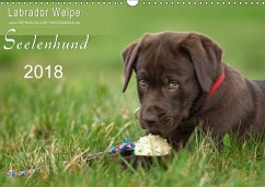 Labrador Welpe - Seelenhund (Wandkalender 2018 DIN A3 quer)