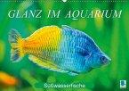 Glanz im Aquarium: Süßwasserfische (Wandkalender 2018 DIN A2 quer)