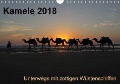 Kamele 2018 - Unterwegs mit zottigen WüstenschiffenCH-Version (Wandkalender 2018 DIN A4 quer)