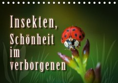 Insekten, Schönheit im verborgenen (Tischkalender 2018 DIN A5 quer)