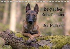 Belgischer Schäferhund - Der Malinois (Tischkalender 2018 DIN A5 quer)