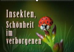 Insekten, Schönheit im verborgenen (Wandkalender 2018 DIN A2 quer)