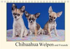 Chihuahua Welpen und Freunde (Tischkalender 2018 DIN A5 quer)