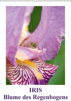 Iris, Blume des Regenbogens (Wandkalender 2018 DIN A2 hoch)
