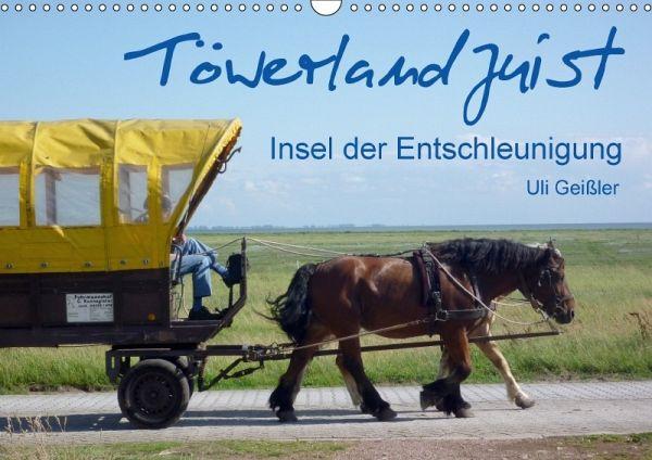 Töwerland Juist (Wandkalender 2018 DIN A3 quer) - Geißler, Uli