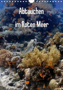 Abtauchen im Roten Meer (Wandkalender 2018 DIN A4 hoch) Dieser erfolgreiche Kalender wurde dieses Jahr mit gleichen Bildern und aktualisiertem Kalendarium wiederveröffentlicht.