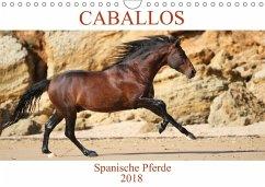 Caballos Spanische Pferde 2018 (Wandkalender 2018 DIN A4 quer) Dieser erfolgreiche Kalender wurde dieses Jahr mit gleichen Bildern und aktualisiertem Kalendarium wiederveröffentlicht.