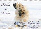 Kinder des Windes - Afghanischer Windhund (Wandkalender 2018 DIN A4 quer) Dieser erfolgreiche Kalender wurde dieses Jahr mit gleichen Bildern und aktualisiertem Kalendarium wiederveröffentlicht.