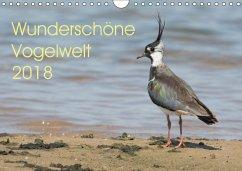 Wunderschöne Vogelwelt (Wandkalender 2018 DIN A4 quer) Dieser erfolgreiche Kalender wurde dieses Jahr mit gleichen Bildern und aktualisiertem Kalendarium wiederveröffentlicht.