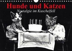 Hunde und Katzen - Nostalgie im Kuschelfell (Wandkalender 2018 DIN A4 quer)
