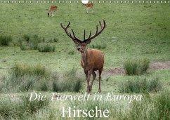 Die Tierwelt in Europa - Hirsche (Wandkalender 2018 DIN A3 quer)