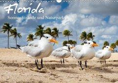 Florida - Sonne, Strände und Naturparks (Wandkalender 2018 DIN A3 quer)