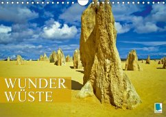 Wunder Wüste (Wandkalender 2018 DIN A4 quer)