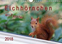 Eichhörnchen am Fenster (Wandkalender 2018 DIN A4 quer) Dieser erfolgreiche Kalender wurde dieses Jahr mit gleichen Bildern und aktualisiertem Kalendarium wiederveröffentlicht.