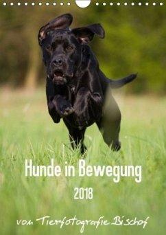 Hunde in Bewegung 2018 von Tierfotografie Bischof (Wandkalender 2018 DIN A4 hoch)