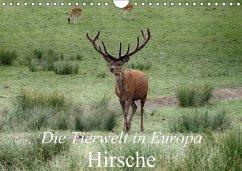 Die Tierwelt in Europa - Hirsche (Wandkalender 2018 DIN A4 quer)