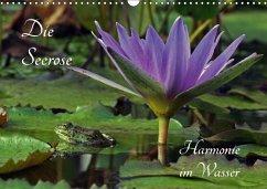 Die Seerose - Harmonie im Wasser (Wandkalender 2018 DIN A3 quer)