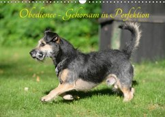 Obedience - Gehorsam in Perfektion (Wandkalender 2018 DIN A3 quer)