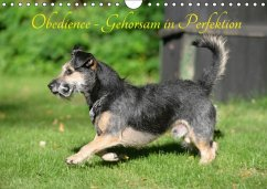Obedience - Gehorsam in Perfektion (Wandkalender 2018 DIN A4 quer)