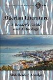 Algerian Literature (eBook, ePUB)