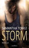 Storm (eBook, ePUB)