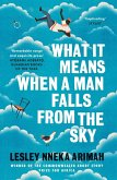 What It Means When A Man Falls From The Sky (eBook, ePUB)