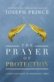 The Prayer of Protection (eBook, ePUB)