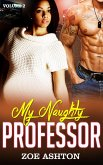 My Naughty Professor (eBook, ePUB)
