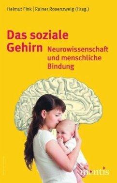 Sinne, Gehirn und Geist