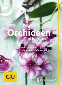 Orchideen pflegen (Mängelexemplar) - Röllke, Frank