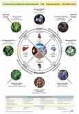 Wandtafel Traditionelle Europäische Naturheilkunde TEN
