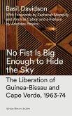 No Fist Is Big Enough to Hide the Sky (eBook, ePUB)
