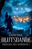 Blutsbande / Krieger des Nordens Bd.1