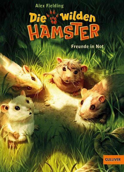 Buch-Reihe Die wilden Hamster