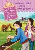 Hanni und Nanni und die Pony-Zwillinge / Hanni und Nanni Bd.38