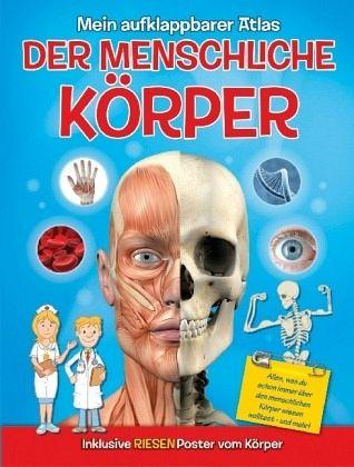 Mein aufklappbarer Atlas - Der menschliche Körper - Buch - bücher.de