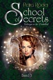 School of Secrets (Band3) - Verborgen in der Dunkelheit (eBook, ePUB)