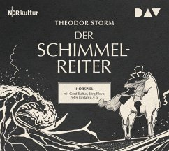 Der Schimmelreiter, 1 Audio-CD - Storm, Theodor