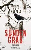 Sündengrab / Detective Ravn Bd.3 (eBook, ePUB)