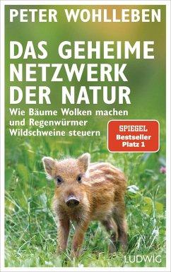 Das geheime Netzwerk der Natur - Wohlleben, Peter