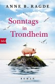Sonntags in Trondheim / Die Lügenhaus-Serie Bd.4