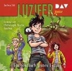 Ein teuflisch gutes Team / Luzifer junior Bd.2 (2 Audio-CDs)