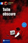 Toile obscure