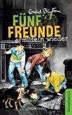 Fünf Freunde ermitteln wieder / Fünf Freunde Doppelbände Bd.2