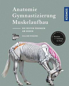 Anatomie, Gymnastizierung, Muskelaufbau - Higgins, Gillian