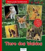 Tiere des Waldes / Meine große Tierbibliothek