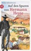 Auf den Spuren von Hermann Hesse (eBook, ePUB)