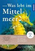 Was lebt im Mittelmeer (eBook, PDF)