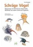 Schräge Vögel (eBook, PDF)